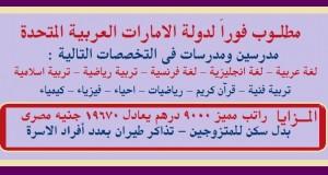 وظائف معلمين الامارات